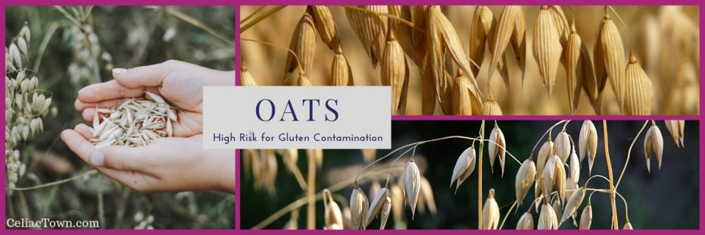 Do oats have gluten graphic
