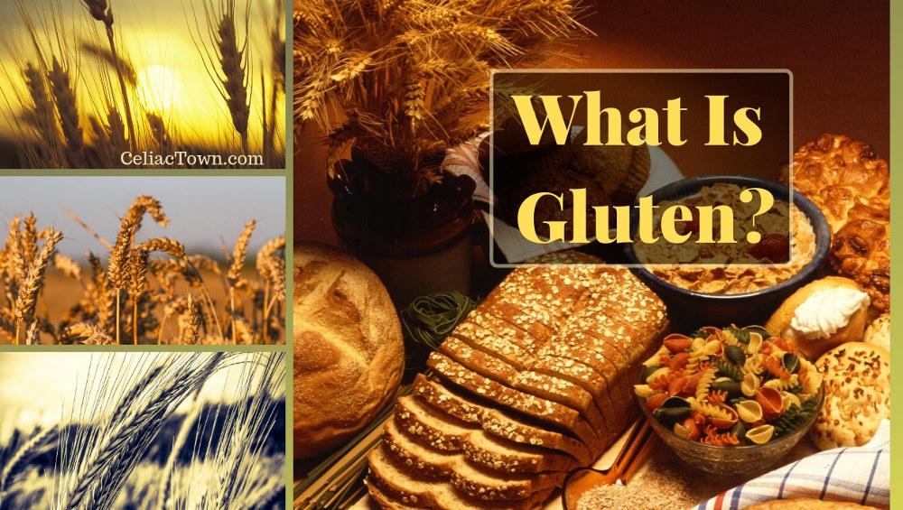 What's Gluten graphic